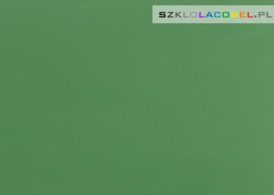 Lacobel Krakow Zielen Dzungli 0667