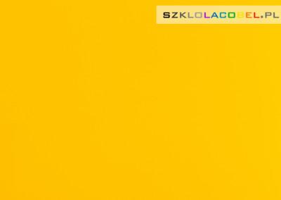 Panele Szklane Kuchenne Intensywny Żółty 1023